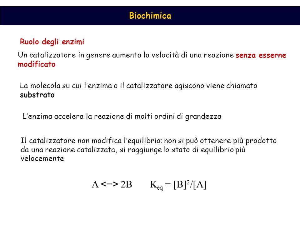 A <−> 2B Keq = [B]2/[A]